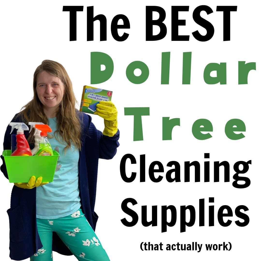 25+ Must Buy Dollar Tree Cleaning Supplies (That Actually Work)