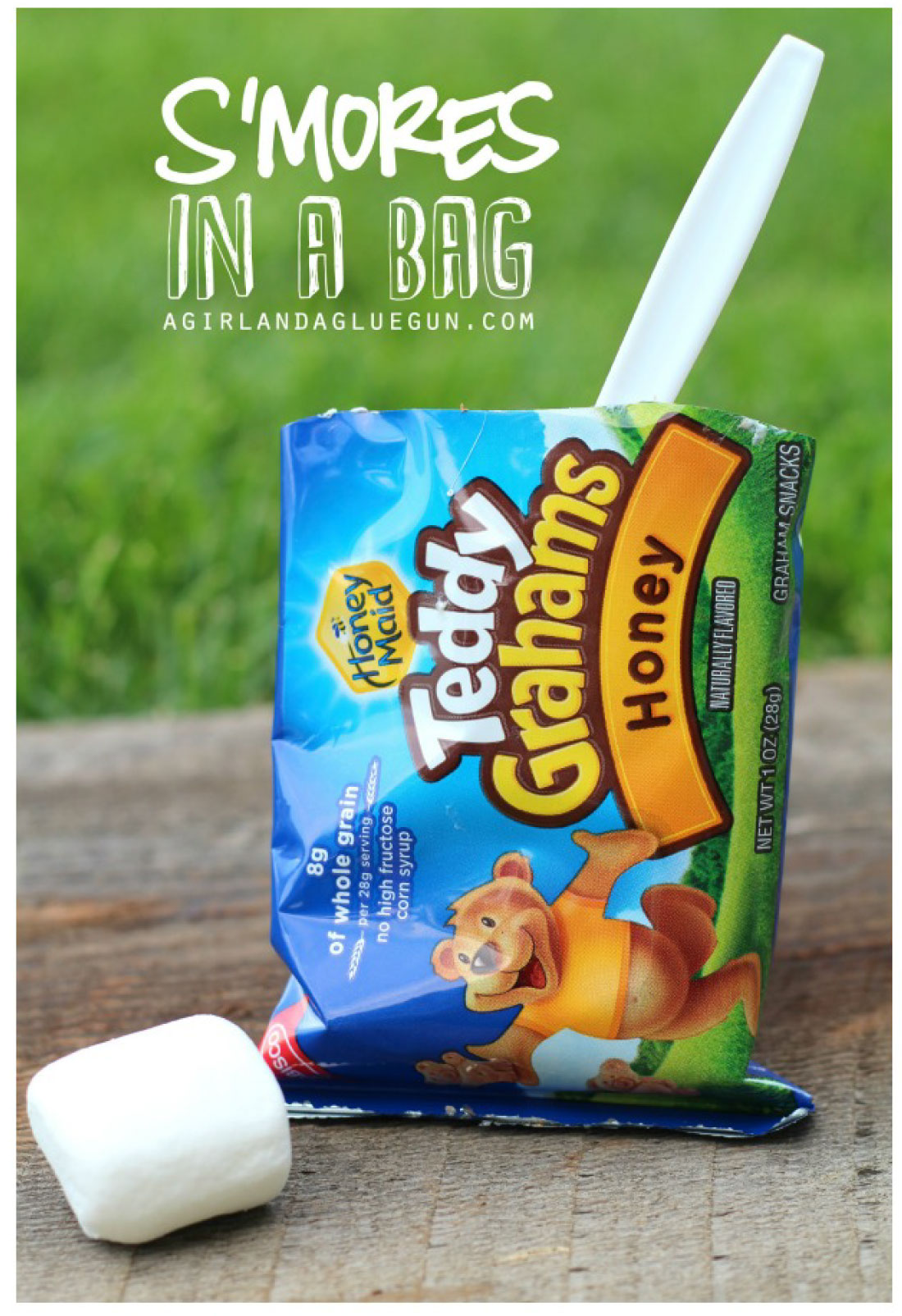 Day 33- S'MORES IN A BAG {100 Days of Summer Fun}