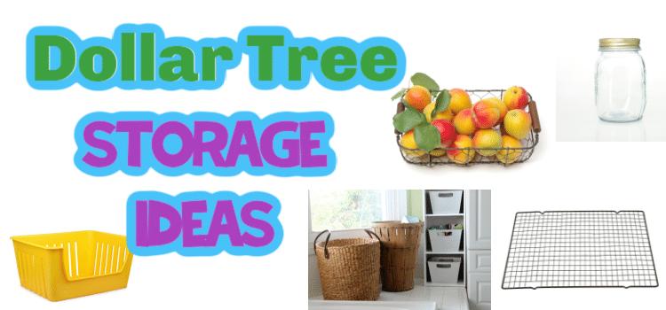 20+ AMAZING Dollar Tree Storage Ideas